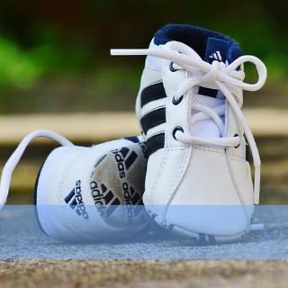 Sneakers baby's